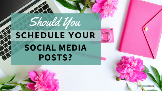 why schedule your social media